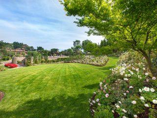 Progettazione giardino ed esterni per ristorante Da Vittorio